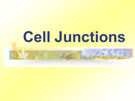 "Cell Junctions. ""serve to anchor cells to one another or to provide a passageway for cellular exchange."" Three major types: Desmosomes Tight junctions."