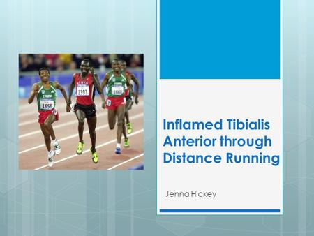 Inflamed Tibialis Anterior through Distance Running Jenna Hickey.