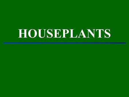 HOUSEPLANTS. ALSO KNOWN AS: Interior Landscaping Plantscaping ∼ shopping malls ∼ motel complexes ∼ office buildings ∼ houses ∼ atriums.