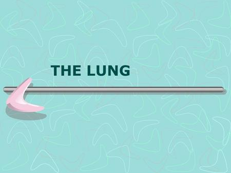 THE LUNG. The Lung  Embryology  Bronchial system  Alveolar system  Anatomy  Lobes  Fissures  Segments  Blood supply.