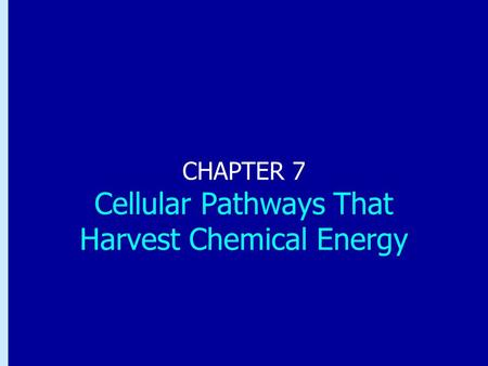 Chapter 7: Cellular Pathways That Harvest Chemical Energy CHAPTER 7 Cellular Pathways That Harvest Chemical Energy.