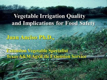 Vegetable Irrigation Quality and Implications for Food Safety Vegetable Irrigation Quality and Implications for Food Safety Juan Anciso Ph.D., Extension.