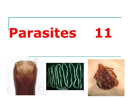 Parasites 11. What is a Parasite? Parasite is an organism that lives within or upon a different host species and may cause harm to the host.