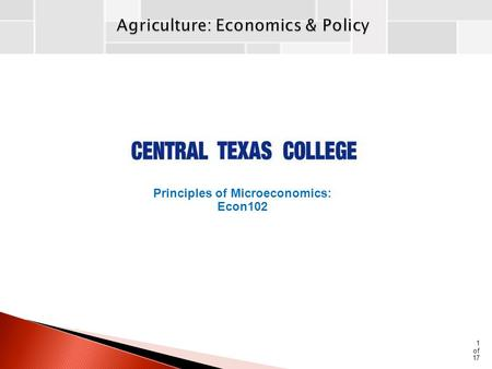 1 of 17 Principles of Microeconomics: Econ102. Price & Income instability results from:  An inelastic demand for agricultural products  Very low price.