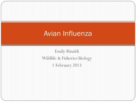 Emily Rinaldi Wildlife & Fisheries Biology 1 February 2013 Avian Influenza.