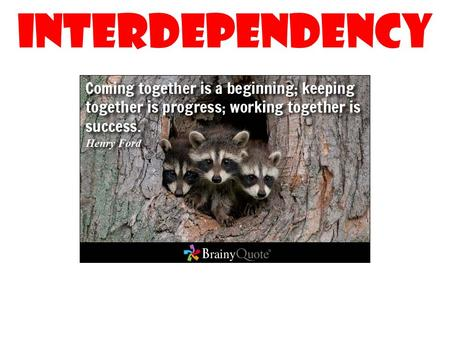 INTERDEPENDENCY. EMPOWERING YOUR PROFESSIONAL LIFE 1.Determining how far to take your org relationship 2.Building your job description around co-worker.