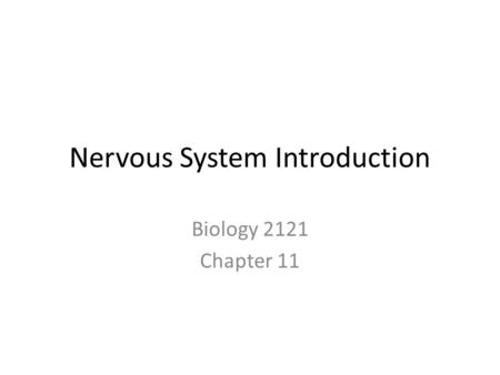Nervous System Introduction Biology 2121 Chapter 11.