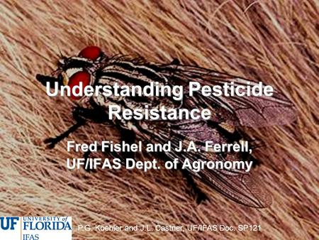 Understanding Pesticide Resistance Fred Fishel and J.A. Ferrell, UF/IFAS Dept. of Agronomy P.G. Koehler and J.L. Castner, UF/IFAS Doc. SP121.