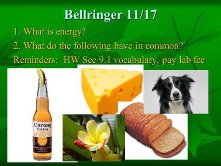 Bellringer 11/17 1. What is energy? 2. What do the following have in common? Reminders: HW Sec 9.1 vocabulary, pay lab fee.