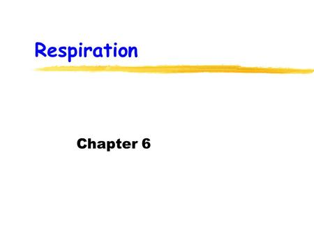 Respiration Chapter 6. Cellular Respiration - Basics releases energy from glucose released energy is chemical energy occurs in cell cytoplasm mitochondria.