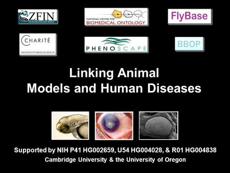 Linking Animal Models and Human Diseases Supported by NIH P41 HG002659, U54 HG004028, & R01 HG004838 Cambridge University & the University of Oregon.