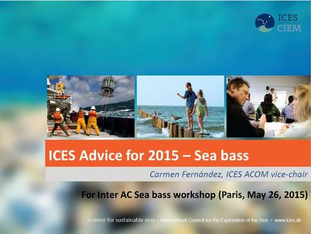 ICES Advice for 2015 – Sea bass Carmen Fernández, ICES ACOM vice-chair For Inter AC Sea bass workshop (Paris, May 26, 2015)