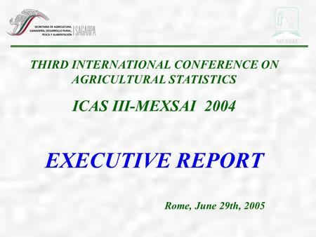THIRD INTERNATIONAL CONFERENCE ON AGRICULTURAL STATISTICS ICAS III-MEXSAI 2004 EXECUTIVE REPORT Rome, June 29th, 2005 MEXSAI.