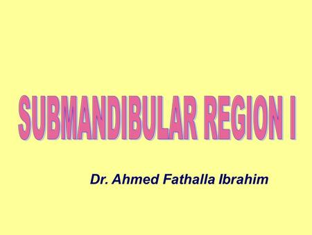 SUBMANDIBULAR REGION I