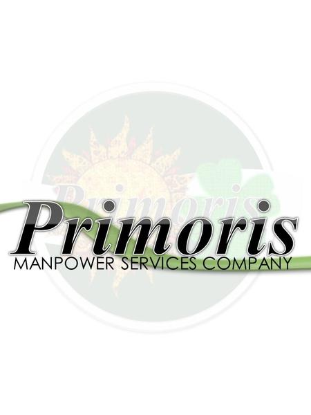 MANPOWER SERVICES COMPANY. PRIMORIS MANPOWER SERVICES COMPANY Letter of Proposal Corporate Profile Value Added Services Contact Us Table of Contents 1.
