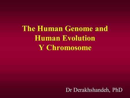 The <strong>Human</strong> Genome and <strong>Human</strong> Evolution Y <strong>Chromosome</strong> Dr Derakhshandeh, PhD.