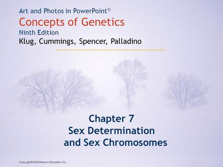 Copyright © 2009 Pearson Education, Inc. Art and Photos in PowerPoint ® Concepts of Genetics Ninth Edition Klug, Cummings, Spencer, Palladino Chapter 7.