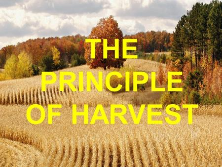 THE PRINCIPLE OF HARVEST