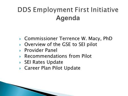  Commissioner Terrence W. Macy, PhD  Overview of the GSE to SEI pilot  Provider Panel  Recommendations from Pilot  SEI Rates Update  Career Plan.