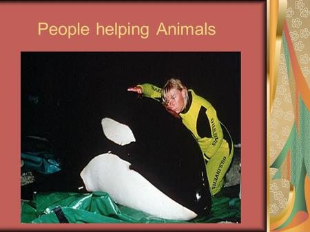 People helping Animals. Vocabulary Injury-Damage or harm done to a person or thing. Slurp- To drink or eat noisly.
