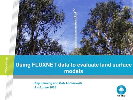 Using FLUXNET data to evaluate land surface models Ray Leuning and Gab Abramowitz 4 – 6 June 2008.