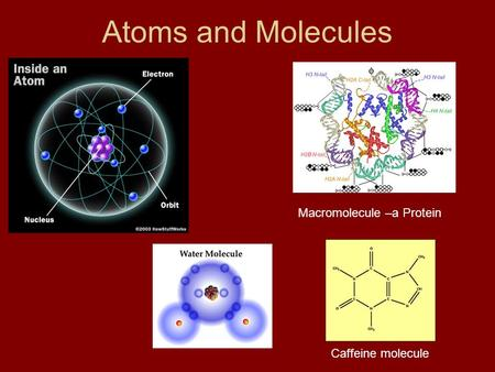Atoms and Molecules Caffeine molecule Macromolecule –a Protein.