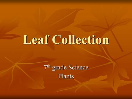 Leaf Collection 7 th grade Science Plants Objective Collect and identify Collect and identify different leaves of Mississippi different leaves of Mississippi.