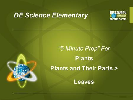 "DE Science Elementary ""5-Minute Prep"" For Plants Plants and Their Parts > Leaves."