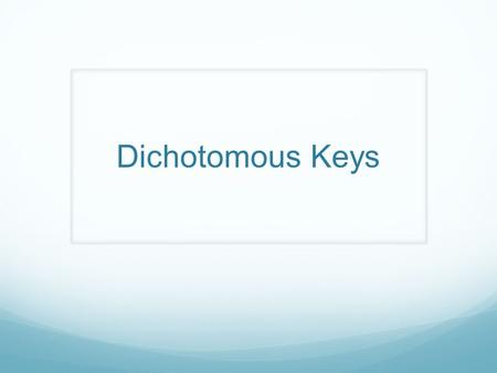 Dichotomous Keys. Introduction A dichotomous key is a tool that allows the user to determine the identity of items in the natural world, such as trees,