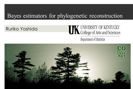 Bayes estimators for phylogenetic reconstruction Ruriko Yoshida.