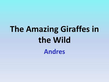 The Amazing Giraffes in the Wild Andres. Table Of Contents.