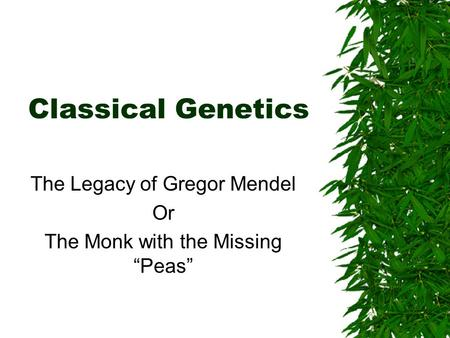 "Classical Genetics The Legacy of Gregor Mendel Or The Monk with the Missing ""Peas"""
