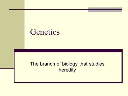 Genetics The branch of biology that studies heredity.