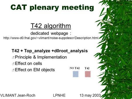 CAT plenary meeting VLIMANT Jean-RochLPNHE13 may 2003 T42 algorithm dedicated webpage :