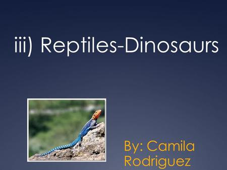 Iii) Reptiles-Dinosaurs By: Camila Rodriguez. Dinosaurs  Not the first reptile  Triassic period  Cretaceous period  Diapsid skull.