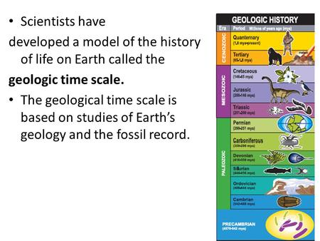 Scientists have developed a model of the history of life on Earth called the geologic time scale. The geological time scale is based on studies of Earth's.