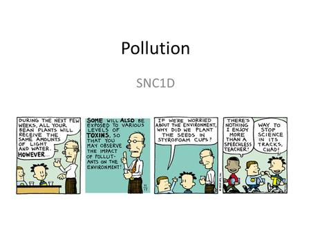 Pollution SNC1D. Pollution: harmful contaminants released into the environment.