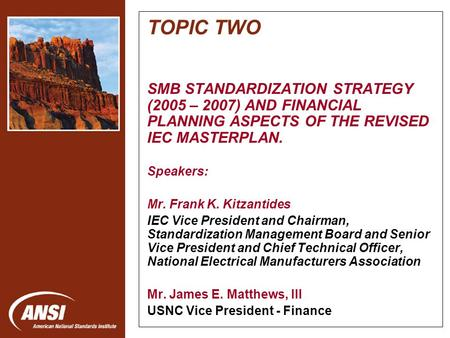 Nanotechnology Standards Panel TOPIC TWO SMB STANDARDIZATION STRATEGY (2005 – 2007) AND FINANCIAL PLANNING ASPECTS OF THE REVISED IEC MASTERPLAN. Speakers: