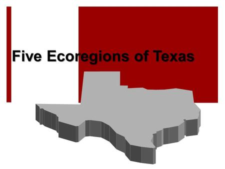 Five Ecoregions of Texas. What Is An Ecoregion?  Ecoregion – a major ecosystem with distinctive geography, characteristic plants and animals, ecosystems,