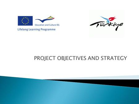 PROJECT OBJECTIVES AND STRATEGY. What are the concrete objectives of the partnership? What subjects or problems we intend to address. What approach will.
