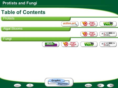 Protists and Fungi Protists Algal Blooms Fungi Table of Contents.