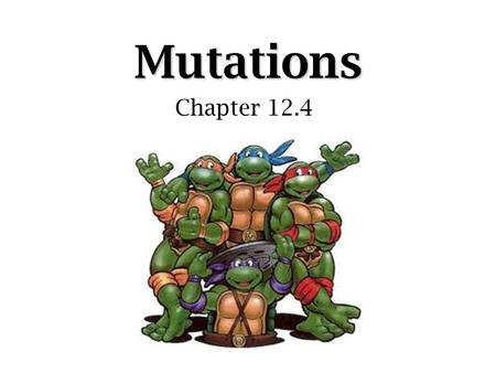 Mutations Chapter 12.4. Mutation  A result of changes in individual genes or the gene arrangements on chromosomes –Original code (order of bases) is.