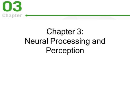 Chapter 3: Neural Processing and Perception. Neural Processing and Perception Neural processing is the interaction of signals in many neurons.