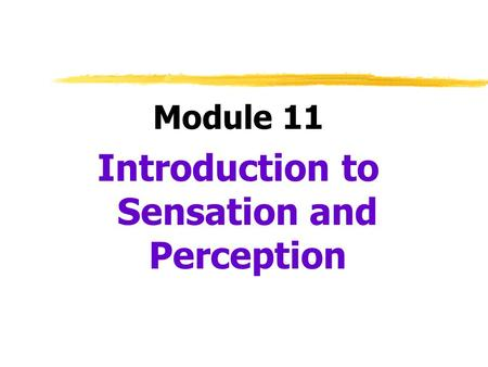 Introduction to Sensation and Perception