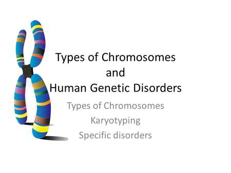 Types of Chromosomes and Human Genetic Disorders Types of Chromosomes Karyotyping Specific disorders.