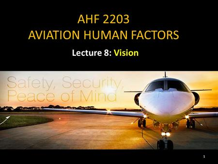 AHF 2203 AVIATION HUMAN FACTORS Lecture 8: Vision 1.