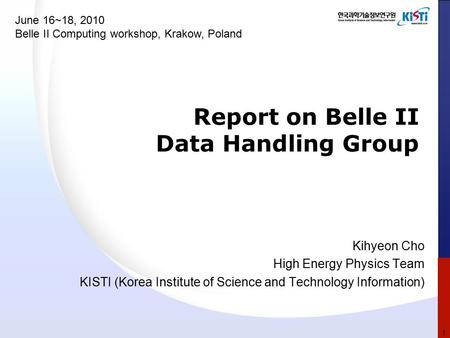 Report on Belle II Data Handling Group Kihyeon Cho High Energy Physics Team KISTI (Korea Institute of Science and Technology Information) June 16~18, 2010.