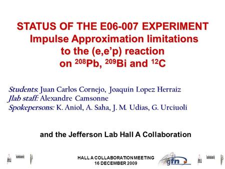 HALL A COLLABORATION MEETING 16 DECEMBER 2009 STATUS OF THE E06-007 EXPERIMENT Impulse Approximation limitations to the (e,e'p) reaction on 208 Pb, 209.