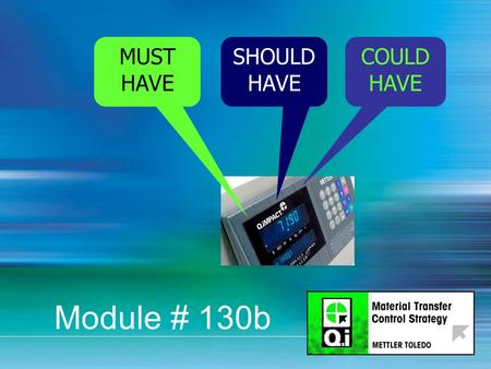 1 MUST HAVE SHOULD HAVE COULD HAVE Module # 130b.