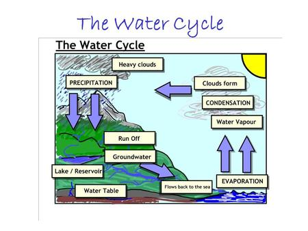 The Water Cycle. Groundwater moves slowly. 1 mm – 1.6 km per day Spring—where water table meets surface Groundwater helps keep rivers, lakes and wetlands.